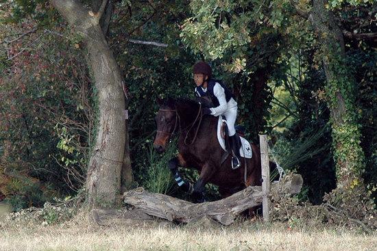 Concours complet à Mansigné (Sarthe), le 12 10 08.