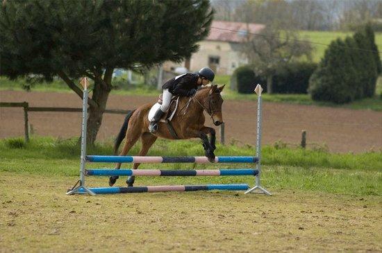 Concours complet club ponam à Mansigné le 13/04/08.