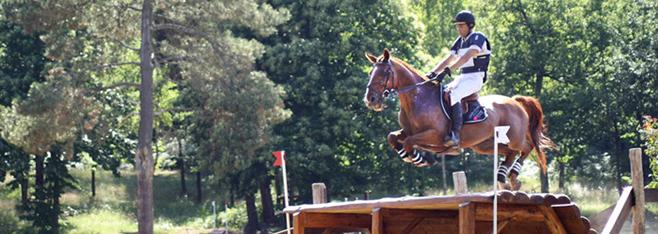 Compétition poneys & chevaux, les écuries du perche sur les terrains de concours !